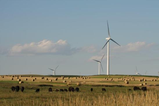 Wind farm image via the Microsoft blog