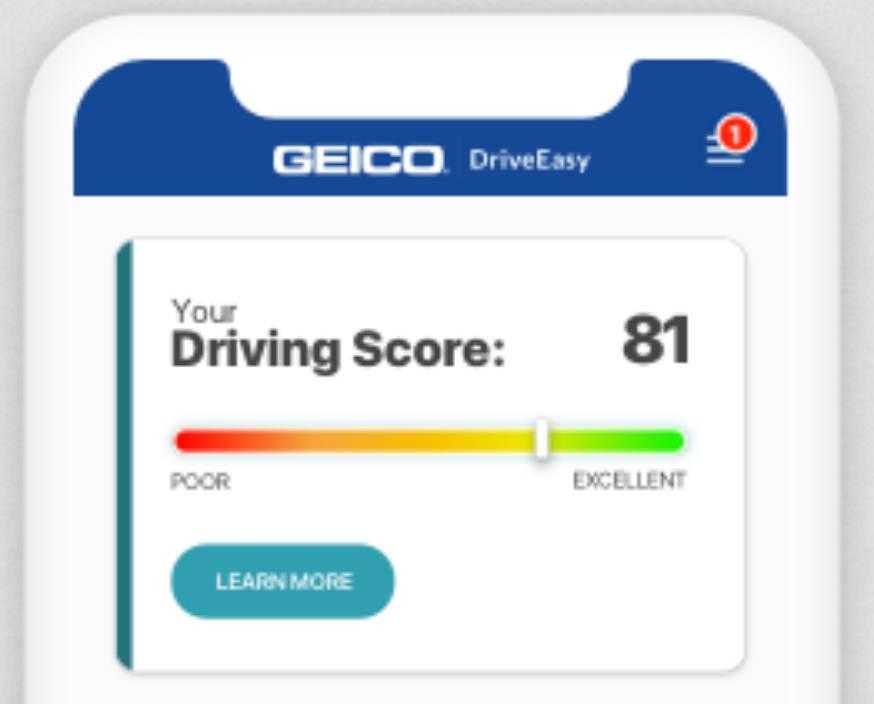 geico-telematics-driveeasy
